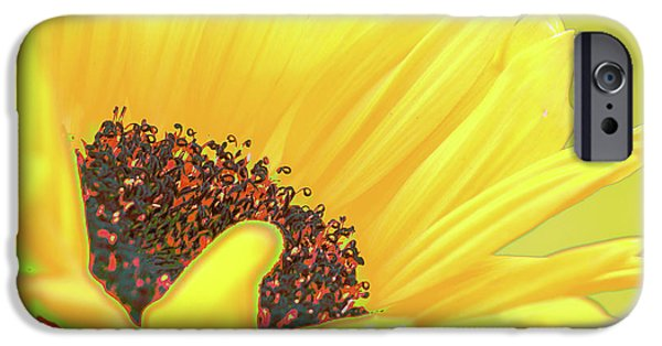 Abstract Sunflower iPhone Cases - Sunny sunflower iPhone Case by Carol Lynch