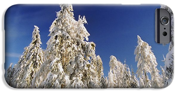 Peaceful Scenery iPhone Cases - Sunny Winter Day iPhone Case by Aged Pixel