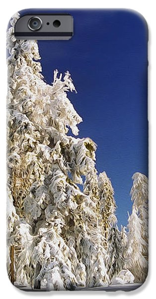 Sunny Winter Day iPhone Case by Aged Pixel