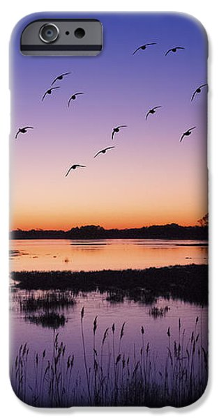 Geese iPhone Cases - Sunrise At Assateague - Wetlands - Silhouette  iPhone Case by Sharon Norman