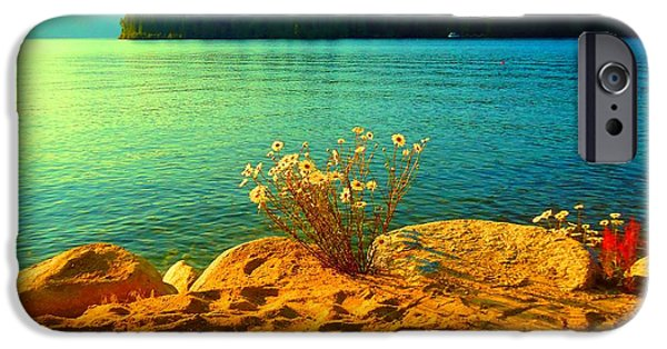 Ann Johndro-collins iPhone Cases - Sunrise at Daisy Lake iPhone Case by Ann Johndro-Collins