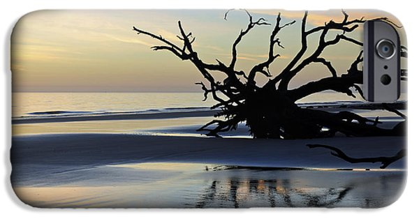 Beach Photographs iPhone Cases - Sunrise at Driftwood Beach 6.6 iPhone Case by Bruce Gourley
