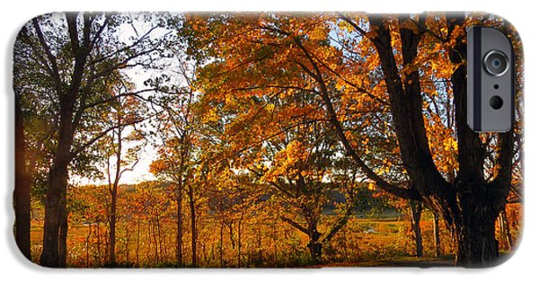Cemetary iPhone Cases - Sunrise Autumn iPhone Case by Dianne Cowen
