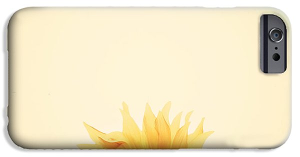 Sunflowers iPhone Cases - Sunrise iPhone Case by Carrie Ann Grippo-Pike