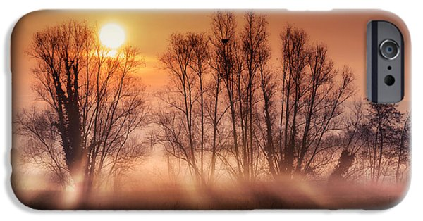 Winter Scene Pyrography iPhone Cases - Sunrise iPhone Case by Elisa Spreafichi