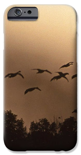 SUNRISE FOG AND INCOMING iPhone Case by Skip Willits
