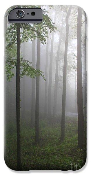 Sunrise Fog iPhone Case by Melissa Petrey