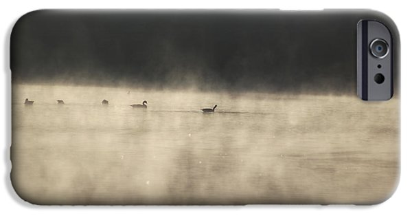 Duo Tone iPhone Cases - Sunrise Geese iPhone Case by Melissa Petrey