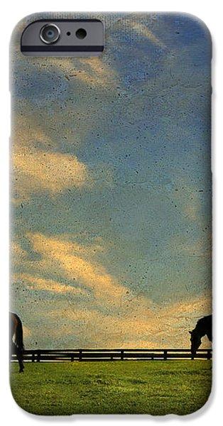 Sunrise Graze iPhone Case by Darren Fisher