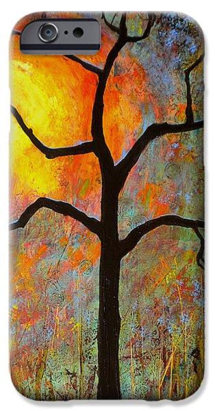 Sunshine Paintings iPhone Cases - Sunrise Sunset iPhone Case by Blenda Studio