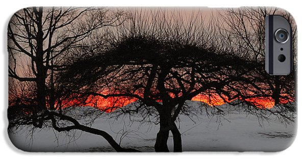 Snowy Night iPhone Cases - Sunroof iPhone Case by Luke Moore