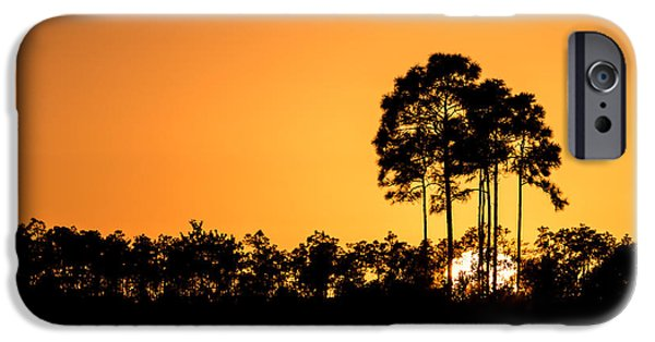 Sun iPhone Cases - Sunset at Long Pine Key Pond iPhone Case by Andres Leon