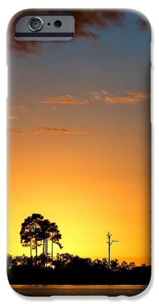 Travel Photographs iPhone Cases - Sunset at Long Pine Key Vertical iPhone Case by Andres Leon