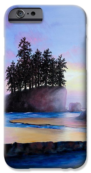Sunset at Tongue Point iPhone Case by Shelley  Irish