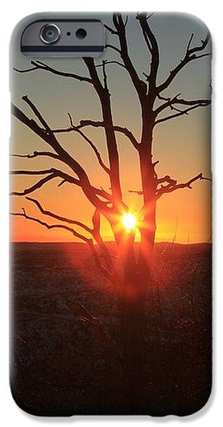 Sunset Bulls Eye iPhone Case by Adam Jewell