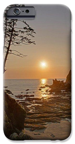 Oregon Coast iPhone Cases - Sunset de Agave iPhone Case by Mike Reid