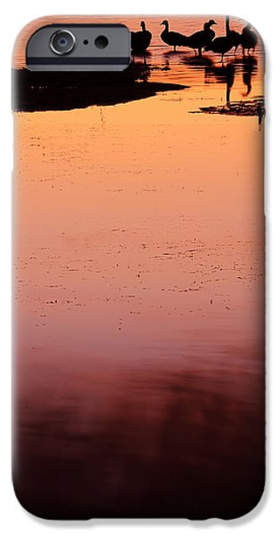 Pantone iPhone Cases - Sunset Discourse- Gorton Pond Warwick Rhode Island iPhone Case by Lourry Legarde