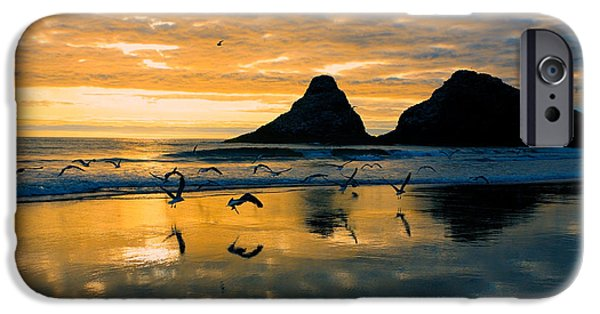 Flying Seagull iPhone Cases - Sunset Flight iPhone Case by Bonnie Bruno