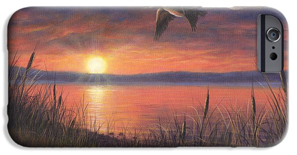 Canadian Geese Paintings iPhone Cases - Sunset Flight iPhone Case by Kim Lockman