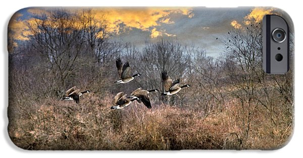 Upstate New York iPhone Cases - Sunset Geese iPhone Case by Christina Rollo