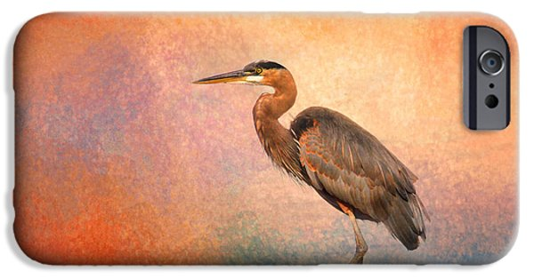 Sea Birds iPhone Cases - Sunset Heron iPhone Case by Jai Johnson