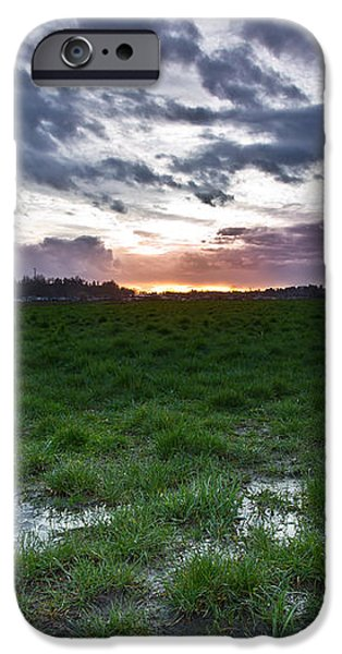 Sunset in the swamp iPhone Case by Eti Reid