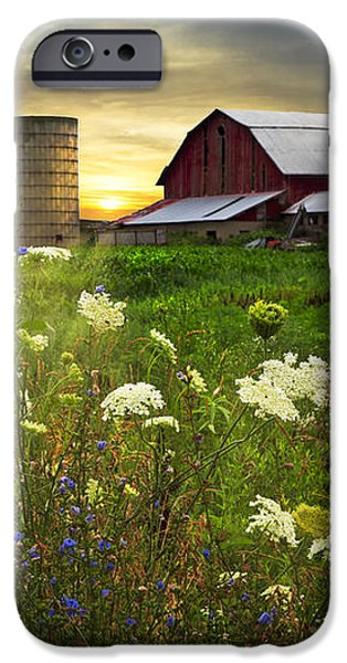 Sunset Lace Pastures iPhone Case by Debra and Dave Vanderlaan