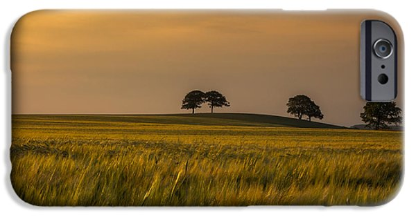 Crops iPhone Cases - Sunset light iPhone Case by Chris Fletcher