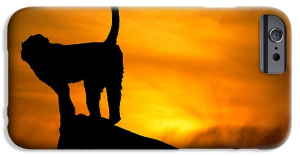 Light And Dark  iPhone Cases - Monkey / Sunset iPhone Case by Martin Newman