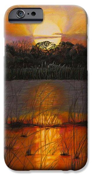 Sunrise iPhone Cases - Sunset on Floridas lake iPhone Case by Zina Stromberg