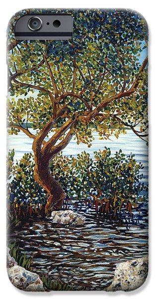 Islamorada iPhone Cases - Sunset on Morada Bay iPhone Case by Danielle  Perry