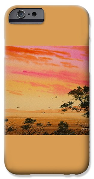Sunset on the Coast iPhone Case by James Williamson