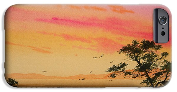 Sunset Framed Prints iPhone Cases - Sunset on the Coast iPhone Case by James Williamson