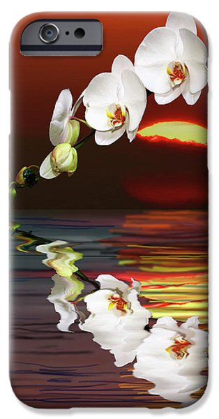 Abstract Seascape iPhone Cases - Sunset Orchids iPhone Case by Angela A Stanton