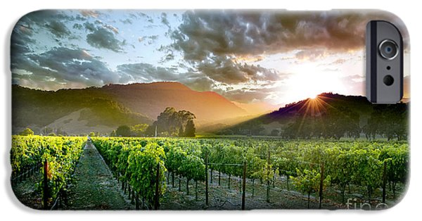 Wine Bottles Photographs iPhone Cases - Wine Country iPhone Case by Jon Neidert