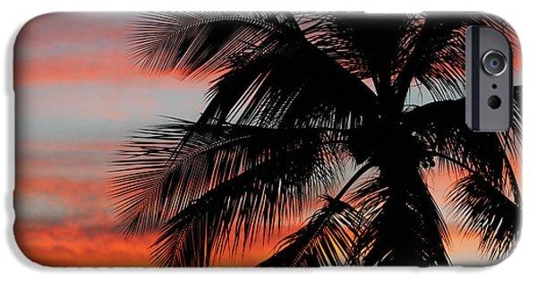 Islamorada iPhone Cases - Sunset Palm iPhone Case by Ty Helbach