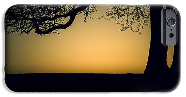 Chris iPhone Cases - Sunset silhouette iPhone Case by Chris Fletcher