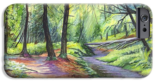 Pathway Drawings iPhone Cases - Sunset Stroll  iPhone Case by Carol Wisniewski