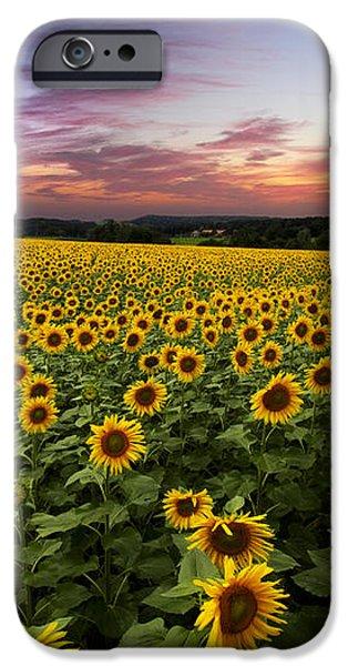 Sunset Sunflowers iPhone Case by Debra and Dave Vanderlaan