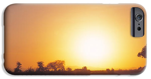 Tarangire iPhone Cases - Sunset, Tarangire, Tanzania, Africa iPhone Case by Panoramic Images