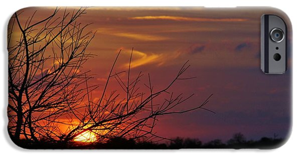 Lynda Dawson-youngclaus Photographer iPhone Cases - Sunset Through the Branches iPhone Case by Lynda Dawson-Youngclaus