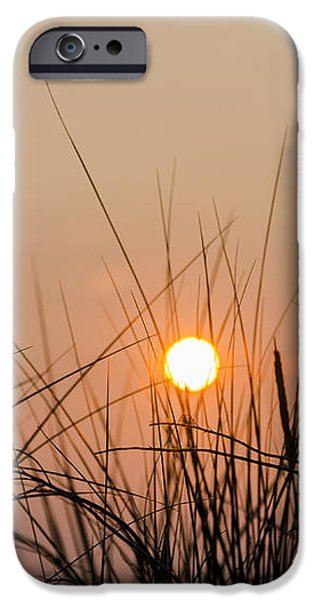 Sunset through the Grass - Villas New Jersey iPhone Case by Bill Cannon