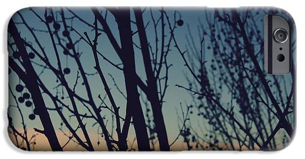 Sunset iPhone Cases - Sunset Through The Trees iPhone Case by Jennifer Ramirez