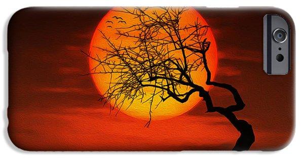Beach Landscape iPhone Cases - Sunset tree iPhone Case by Bess Hamiti