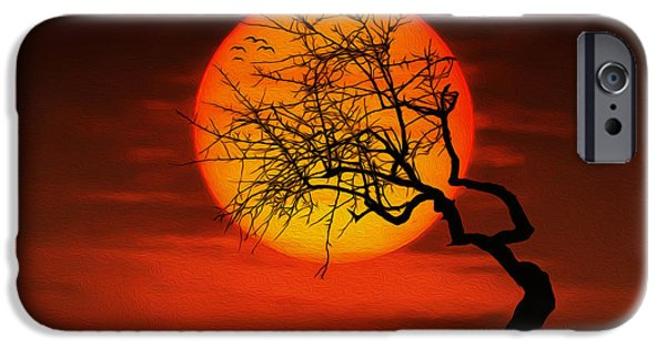 Peaceful Scenery iPhone Cases - Sunset tree iPhone Case by Bess Hamiti
