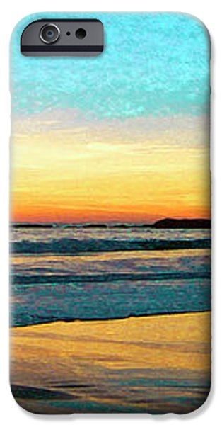 Sunset With Birds iPhone Case by Ben and Raisa Gertsberg