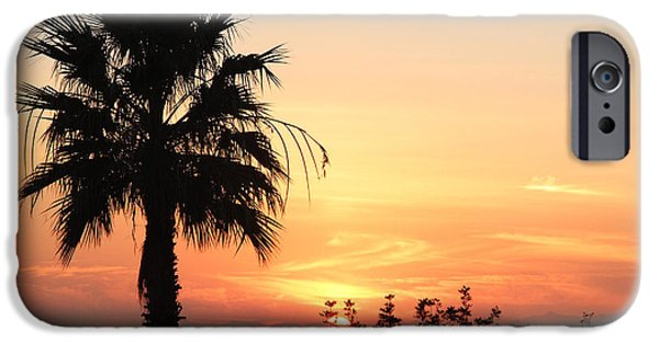 Ocean Sunset iPhone Cases - Sunset with Palm Tree Silhouette iPhone Case by Nina Prommer