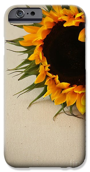 Yellow Images iPhone Cases - Sunshine iPhone Case by Eden Baed