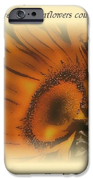 Sunshine For the Ages iPhone Case by Don Wright