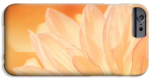 Close Up Floral iPhone Cases - Sunshine iPhone Case by Scott Norris